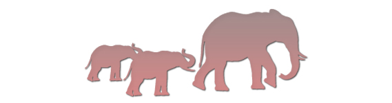 Red Elephant HR human resources